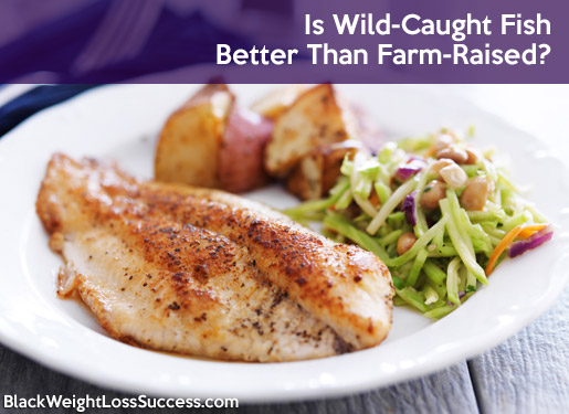 wild caught farm raised fish