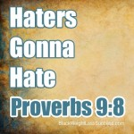 Haters Gonna Hate, Poverbs 9:8