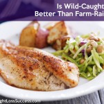 Is Wild-Caught Fish Better Than Farm-Raised?