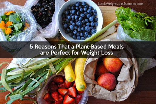 5 Reasons That a Plant-Based Meals are Perfect for Weight ...