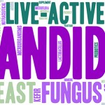 what is candida yeast